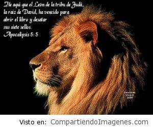El león de la tribu de Juda ha vencido