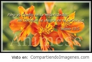 En tu misericordia yo confío Señor