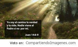 Yo soy el camino…