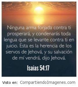 El Señor es nuestro protector
