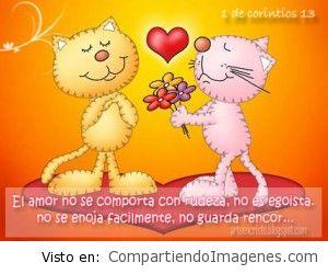 El amor no se comporta con rudeza