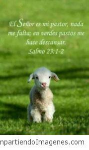 Jehová es mi pastor; nada me faltará