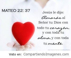 Amaras al Señor tu Dios con todo tu corazon