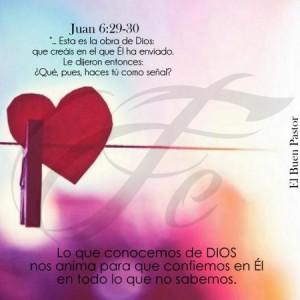 Confiemos siempre en nuestro Señor Jesucristo