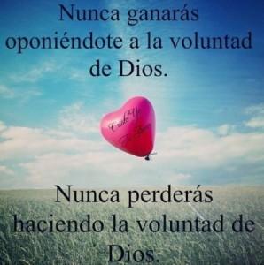 Nunca perderas haciendo la volundad de Dios