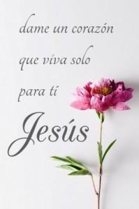 Solo a ti adoraremos Señor Jesus