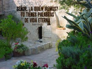 Solo tu Señor tienes palabras de vida eterna