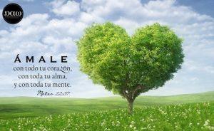 Ama a Dios con TODO tu corazon