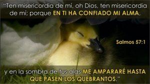 Ten misericordia de mi Señor
