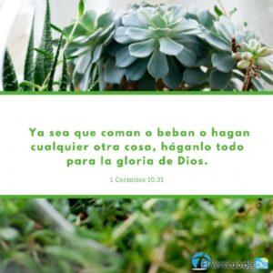 Imagen – Postal – Honrar a Dios en todo