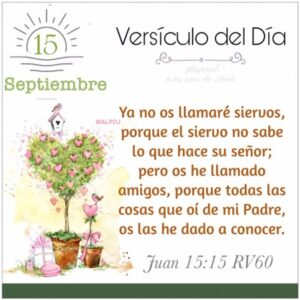 Imagen – Versículo del Día ~ Juan 15:15 RV60