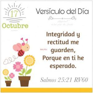 Imagen – Versículo del Día- Salmos 25:21 RV60