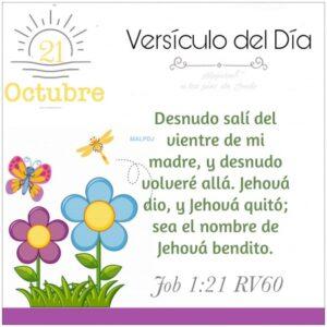 Imagen – Versículo del Día- Job 1:21 RV60