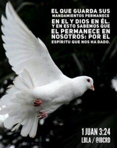 Imagen – Postal – 1 Juan 3:24 #LBLA @ibcrd