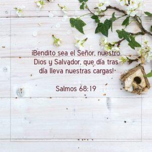 Postal – Bendito sea Dios